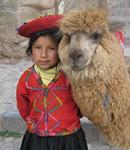 alpaca shawls,scarf,scarves