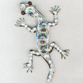 salamanderB165x165.jpg