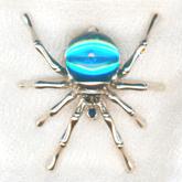 spiderE165x165.jpg
